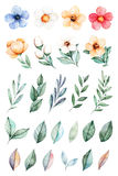 25 lovely clipart of roses,leaves,branches and flowers Royalty Free Stock Photography
