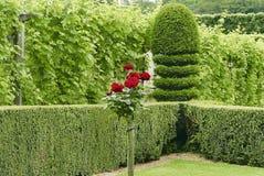 Garden in the loire valley stock photos