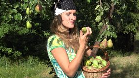Lovely country girl pick ripe fruit from tree branch and eat pear with satisfaction. 4K stock video