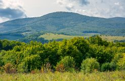 Lovely countryside in autumn. Forest behind the meadow and mountain in the distance Royalty Free Stock Image