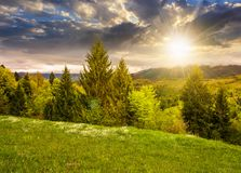 Lovely countryside with grassy hills at sunset. Beautiful nature of Carpathian mountains in springtime evening light Stock Images