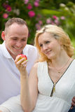 Lovely couple with apple on picnic Stock Photo