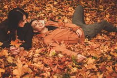 Lovely couple in autumn park Stock Photos