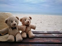 Lovely couple bear with white hat on balcony on white sand beach with Hat at Hua Hin beach, can see riding horse activity, item an stock photos