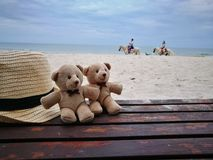 Lovely couple bear with white hat on balcony on white sand beach with Hat at Hua Hin beach, can see riding horse activity, item an stock photo