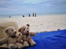 Lovely couple bear with white hat on balcony on white sand beach with Hat at Hua Hin beach, can see riding horse activity, item an stock images