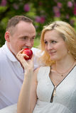 Lovely couple biting apple on picnic Royalty Free Stock Photo