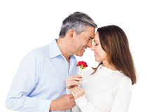 Lovely couple holding flower. On white background Royalty Free Stock Image