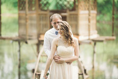 Lovely couple in love kissing each other on the day wedding, standing in the park outdoors near lake Royalty Free Stock Photo