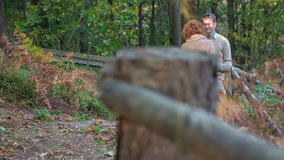 Lovely couple standing in the middle of a forest path. Slow motion footage of a lovely couple standing in the of the path in wooden in the autumn colours on a stock video