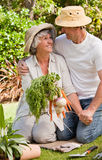 Lovely couple with vegetables Royalty Free Stock Photos