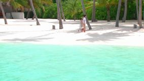 Lovely couple walking romantic wander at sand tropical beach shore palm tree coastline turquoise ocean Maldives island. Lovely couple walking romantic wandering stock video footage
