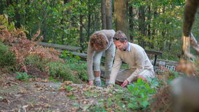 Lovely couple walks past a bench in the woods stock footage