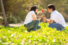 Lovely couples dating Stock Image