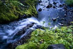 Lovely Creek Stock Photography