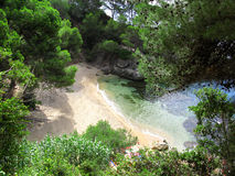 Lovely creek in Costa Brava. Beautiful little creek, sorrounded by pines, rocks and blue water (Costa Brava - Spain Royalty Free Stock Photography