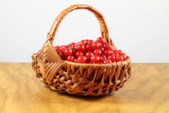 Lovely Currants. Currants in a wickerwork plaited basket on a wooden table before a white background Royalty Free Stock Photos