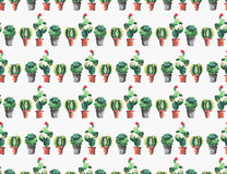 Lovely cute graphic wonderful abstract beautiful bright summer pattern of a two lines colorful cacti in red and brown clay pots Royalty Free Stock Photos