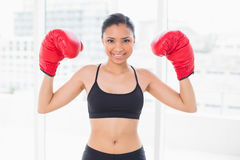 Lovely dark haired model in sportswear wearing red boxing gloves Royalty Free Stock Photo