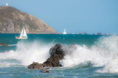 A lovely day for sailing in Wellington. Royalty Free Stock Image