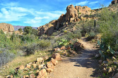 A Lovely Desert Path. At the Boyce Thompson Arboretum State Park in Arizona Royalty Free Stock Photo