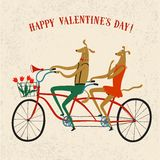 Lovely dogs cyclists  illustration. Cute drawn cartoon dogs on tandem bicycle with basket and flowers. Bicycle postcard about love for st. Valentine's Day Stock Photo