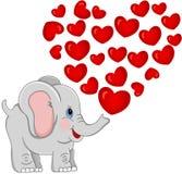 Lovely Elephant Stock Image