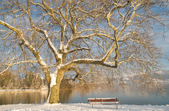 Lovely european winter landscape Stock Image