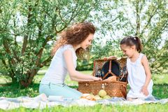 Lovely family picnic in the park Royalty Free Stock Photography