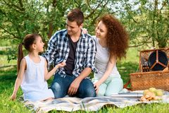 Lovely family picnic in the park Stock Photography