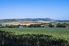 Panorama of East Sussex, England. View towards Firle Beacon. The lovely farming landscape of East Sussex is shown here, with huge bean fields on the edge of the stock photos