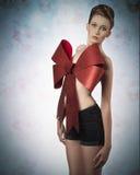 Lovely female christmas gift Stock Photos