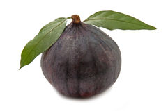 Lovely figs Royalty Free Stock Photos