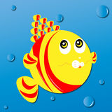 Lovely fish Royalty Free Stock Photos