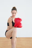 Lovely fit woman wearing red boxing gloves posing in sportswear Stock Photography