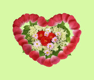 Lovely floral arrangement in the shape of heart Royalty Free Stock Photos