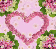 Lovely floral arrangement in the shape of heart from roses Stock Photography