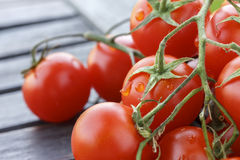 Lovely fresh small red tomatoes on the vine Stock Photo