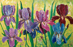 Lovely garden. Original oil painting impressionism on canvas, amazing floristry painting, flowers in garden original artwork, iris garden Royalty Free Stock Image