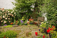 Lovely garden with a wooden bench Royalty Free Stock Photos