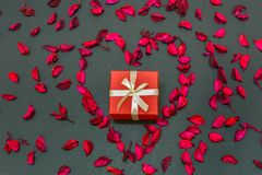 Lovely Valentines Day Gift for the love of life in the centre of heart shaped rose petals. A lovely gift to your girlfriend/boyfriend or husband/wife in a stock image