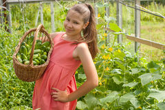 Lovely girl with cucumbers Stock Photos