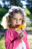 Lovely girl with a flower Royalty Free Stock Image