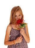 Lovely girl holding up a red roses. Stock Photos