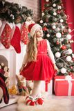 Lovely girl in santa cap near christmas tree, studio shot. Stock Photos