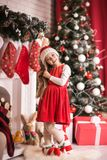 Lovely girl in santa cap near christmas tree, studio shot. Royalty Free Stock Photo