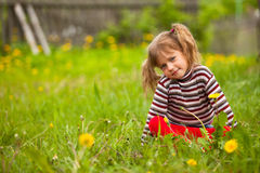 Lovely girl sitting in grass. Lovely five-year girl sitting in grass Stock Photo