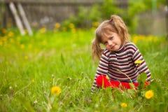 Lovely girl sitting in grass. Stock Photo