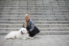 Lovely girl on a walk with a beautiful dog. Lovely girl on a walk with a beautiful fluffy dog Samoyedr Royalty Free Stock Photo