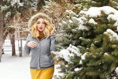 Lovely girl winter Royalty Free Stock Photos